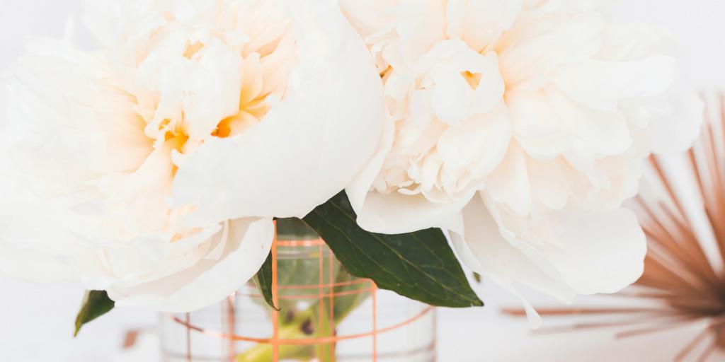 haute stock photography - florals - 2